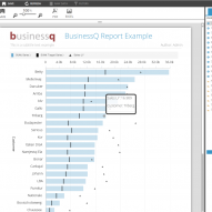 BusinessQ Report Example